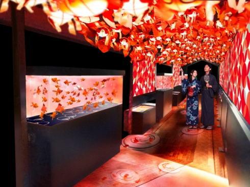 日本最大級、金魚1000匹が舞う!すみだ水族館「金魚ワンダーランド」