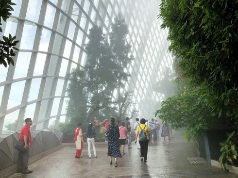 シンガポール ガーデンズバイザベイ クラウドフォレスト2