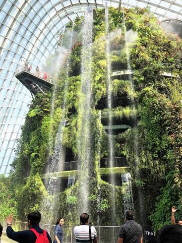 シンガポール ガーデンズバイザベイ クラウドフォレスト