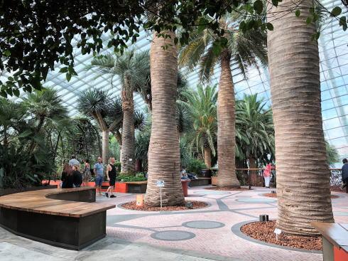 シンガポール ガーデンズバイザベイ フラワードームの中3