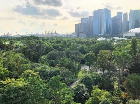 シンガポール ガーデンズバイザベイ スカイウェイからの風景