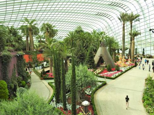 シンガポール ガーデンズバイザベイ フラワードームの中