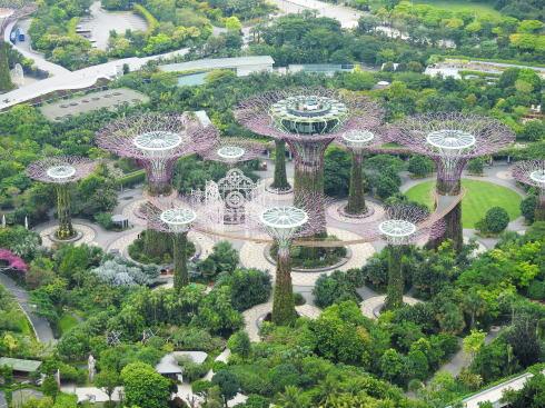シンガポール ガーデンズバイザベイ スーパーツリー