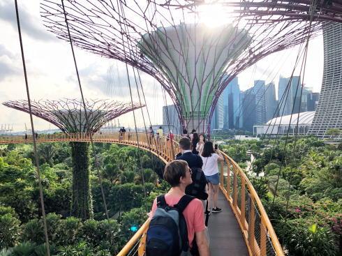 シンガポール ガーデンズバイザベイ スカイウェイ3