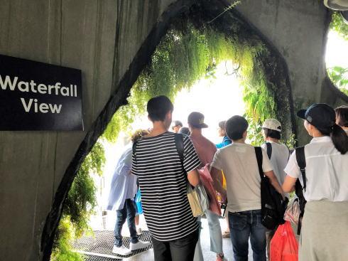 シンガポール ガーデンズバイザベイ クラウドフォレスト4