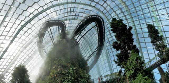 シンガポール ガーデンズバイザベイ クラウドフォレスト3