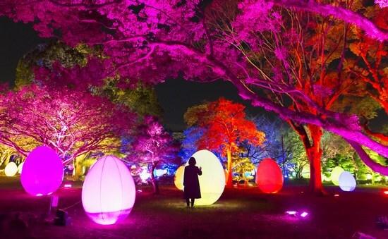 福岡城がキラキラ輝く!「光の祭」チームラボのデジタルアートで