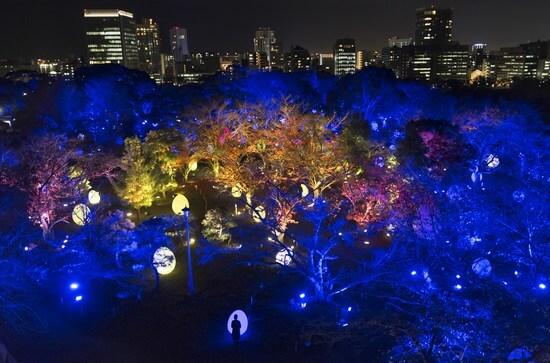 福岡城のデジタルアート、チームラボ 光の祭