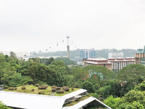 マーライオンタワー(セントーサマーライオン)からの風景
