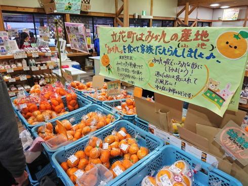 福岡県八女市 道の駅たちばな みかん販売