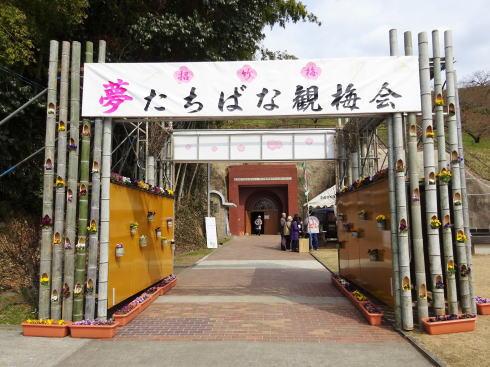 福岡県八女市 竹灯籠 観梅会に合わせて開催