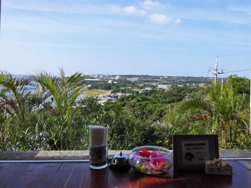 沖縄 アイスクリンカフェ アーク から見える景色2