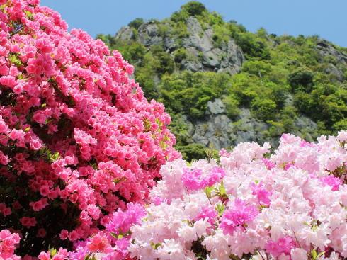 御船山楽園 つつじ谷の風景