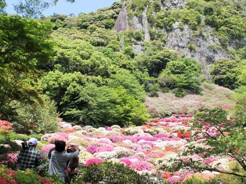 御船山楽園 つつじ谷の風景3