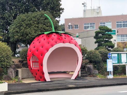 長崎フルーツバス停 イチゴ