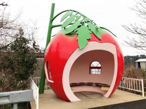 長崎フルーツバス停 トマト