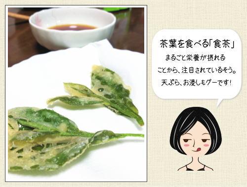緑茶の茶葉は食べられる。お茶どころならではの食べ方