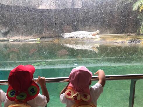 東山動物園 自然動物館