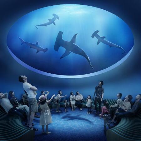 四国水族館、香川に四国最大級が20年春開業へ