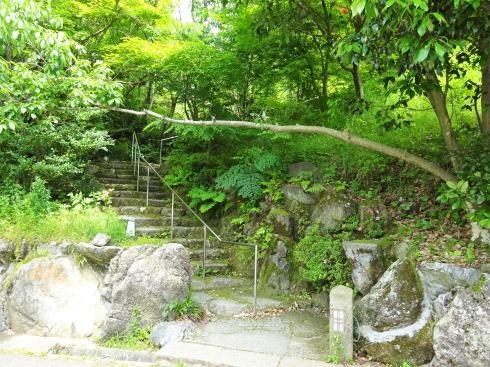 福岡絶景カフェ 茶房わらび野 への階段
