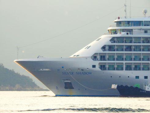 シルバー・シャドー、客室はオールスイートのラグジュアリー客船