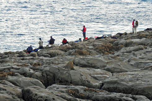 鵜戸神宮、岩場が人気の釣りスポット