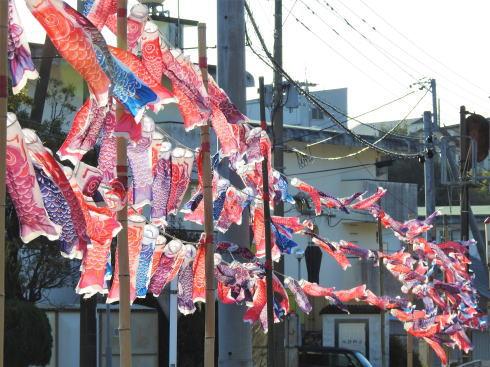 宮崎 天福球場 近くの踏切に鯉のぼり