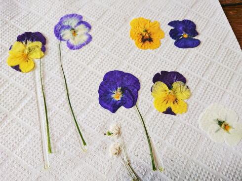 押し花をアイロンで!数日できれいに作れる方法