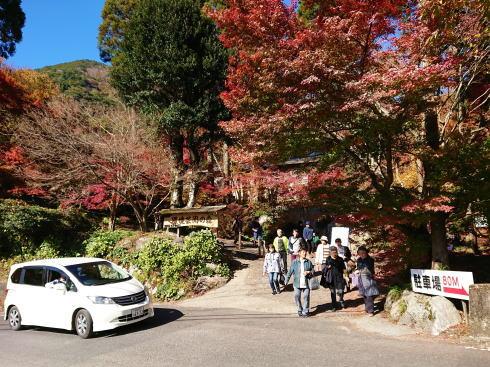 佐賀県 環境芸術の森 エントランス
