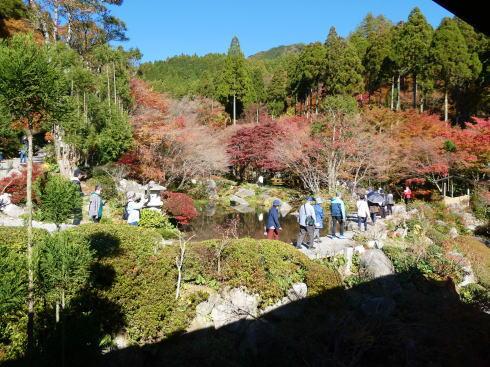 佐賀県 環境芸術の森 散策道へ