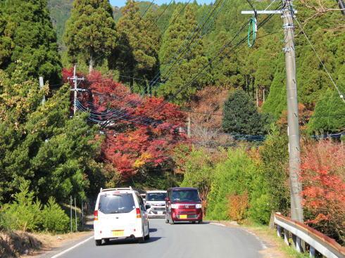 佐賀県 環境芸術の森 への道2