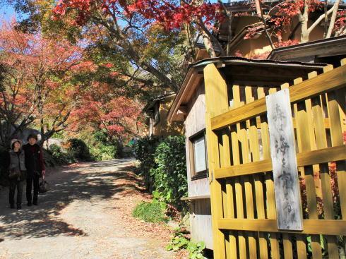 佐賀県 環境芸術の森 園内の様子1