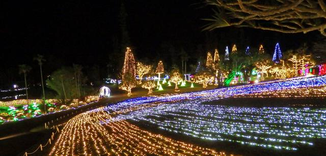 夜の沖縄・東南植物楽園でイルミネーションに包まれ光のお散歩