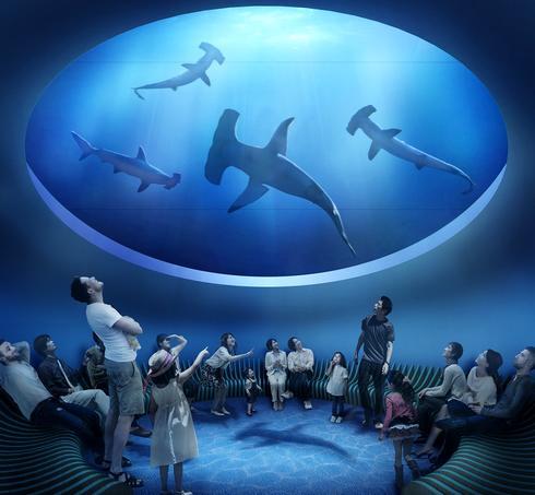 四国水族館 3月オープン!香川に四国エリア最大級、日本屈指「四国の水景」テーマで