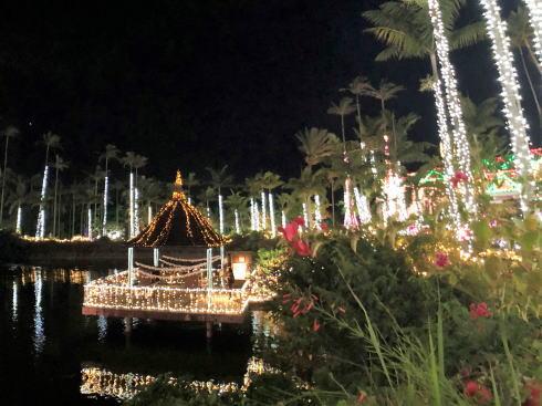 東南植物楽園 イルミネーション 写真4