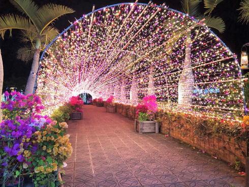 東南植物楽園 イルミネーション 写真