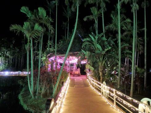 東南植物楽園 イルミネーション 写真5