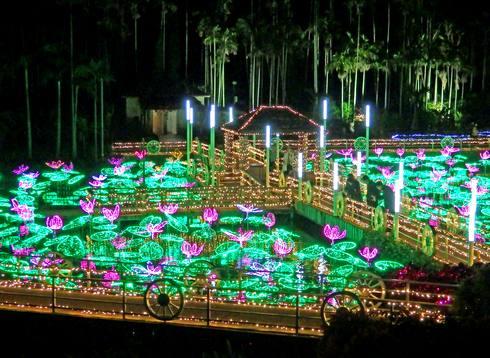 東南植物楽園 イルミネーション 蓮の花