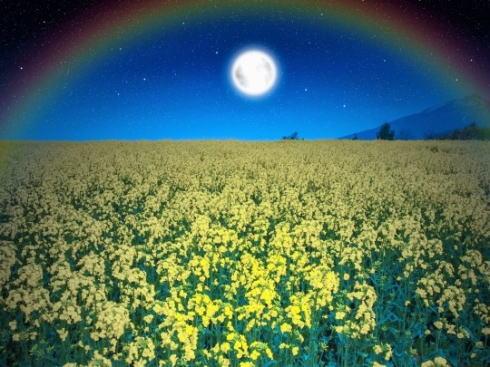 5月7日はフラワームーン、花咲く季節の月をおうちから見上げて
