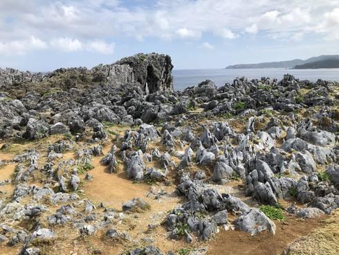 沖縄・辺戸岬の先にサンゴ岩