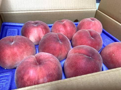桃を皮ごと食べる! 桃の産地がオススメする、甘さを堪能できる桃のたべかた