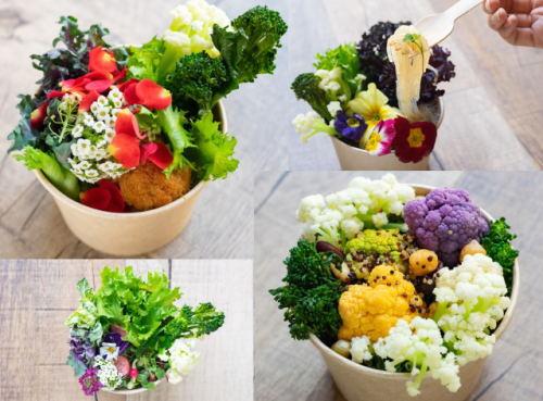 これがヌードル?!花束みたいな「グラスヌードル」マイラーメンが渋谷にオープン